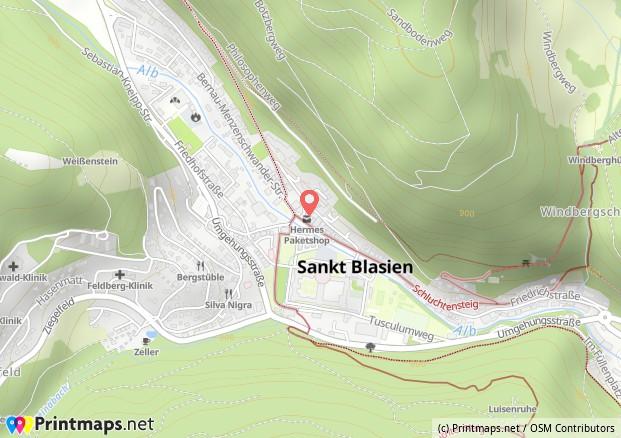 Karte Pedia St. Blasien
